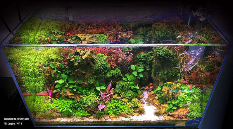 nicrew classicled g2 luz led acuario