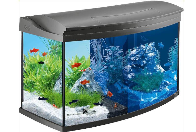 acuario de 100 litros